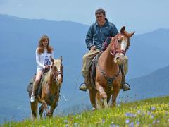 В Сочи хотят возродить конные турпоходы